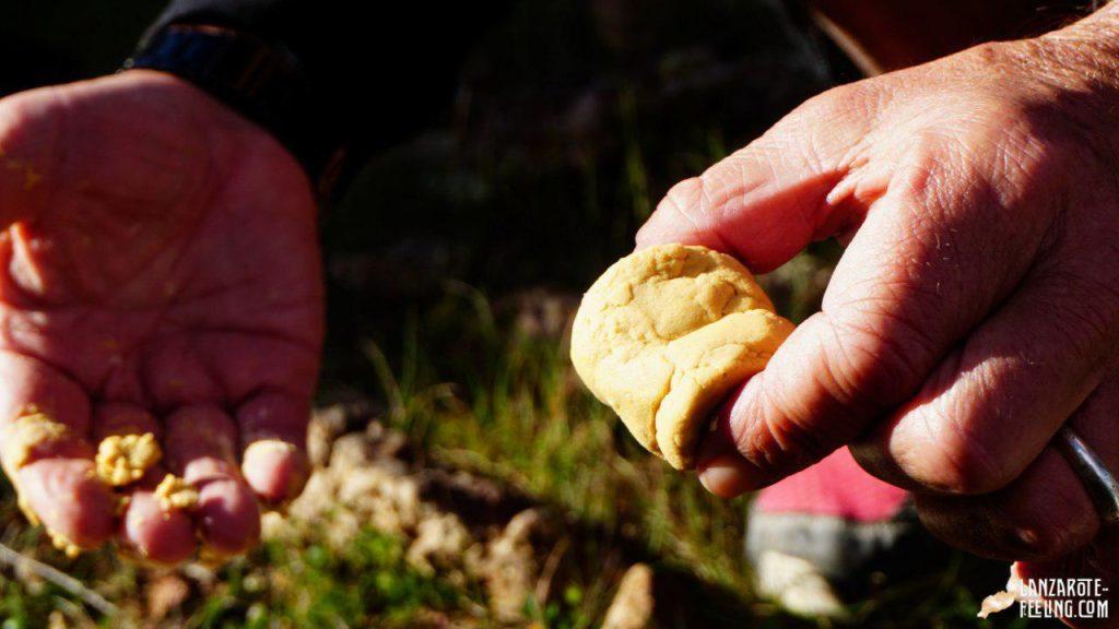 Gofio - kleiner Snack auf Wanderung